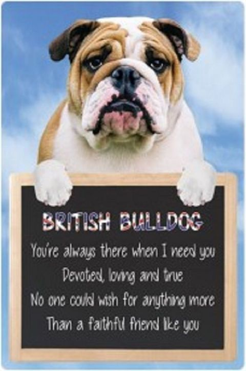 British Bulldog  3D home hang up sign